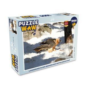 Puzzle 1000 Teile - Bartgeier in einer verschneiten Felslandschaft