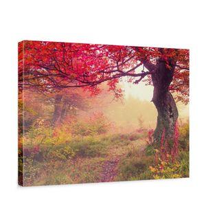 Leinwandbild Wald Bäume Herbst Natur Sonne | no. 258, Qualität und Größe | Leinwandbilder | Classic:Querformat - 100x75 cm - PREMIUM PLUS
