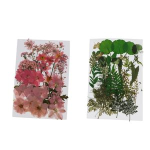 76 Stück Natürliche Gepresste Blumen DIY Tischkarten Katalog