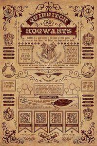 Harry Potter Poster Quidditch at Hogwarts 91,5 x 61 cm