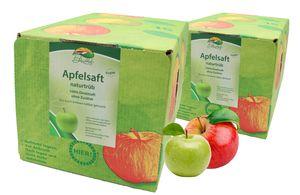 Bleichhof Apfelsaft naturtrüb – 100% Direktsaft, vegan, OHNE Zuckerzusatz, Bag-in-Box (2x 5l Saftbox)