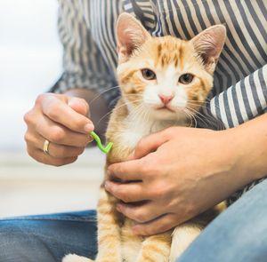 ALTI LIVING Zeckenhaken / Zeckenentferner / Zeckenzangen im 3er Set (S/M/L) für Hunde, Katzen, Pferde und Kleintiere - Alternative zu herkömmlichen Methoden (Pinzetten, Zeckenmittel oder -karten)