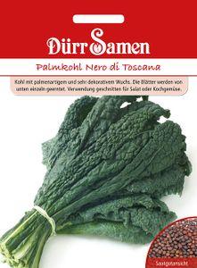 Dürr Samen - Palmkohl Nero di Toscana