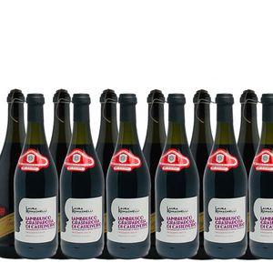 Rotwein Italien Lambrusco und  Fragolino - je 6 Flaschen (12x0,75L)