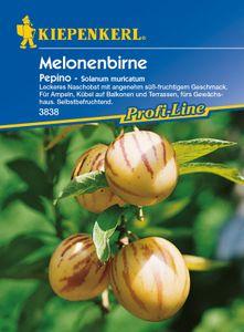 Kiepenkerl Melonenbirne Pepino