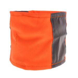 Hundehalsband Katzenhalsband Reflektionshalsband Breit Katzen Hunde Kragen Farbe Orange M