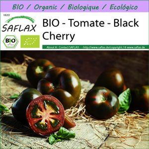 SAFLAX -- Tomate - Black Cherry - 10 Samen - Solanum lycopersicum