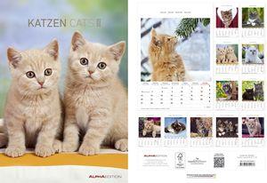 "Bildkalender ""Katzen"" - 24 x 34 cm"