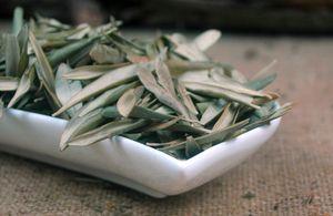 Olivenblätter ganz, Menge:250g