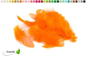 Bastelfedern 5-10cm, ca. 80-100 Stück, Farbauswahl:orange 668