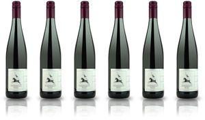 6x Goswin Kranz Regent trocken 2017 –- Weingut Goswin Kranz, Mosel – Rotwein