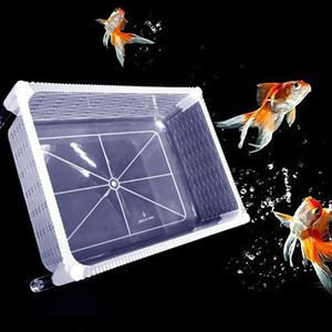 Aquarium Fisch Züchter Box Zuchtbox Zuchttank aus Kunststoff
