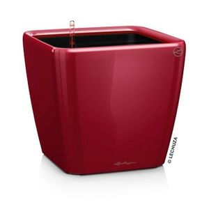 Lechuza QUADRO LS 21, All-in-One, scarlet