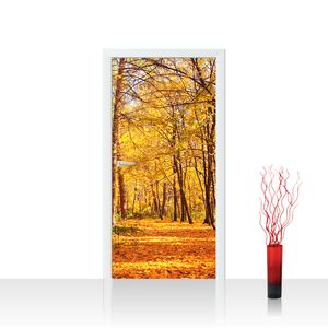Tür Fototapete EXTRA PROTECT selbstklebend no. 84 - 100X211 cm Autumn Forest Herbstblätter Wald Bäume Baum Forest Herbst