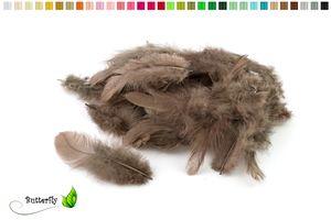 Bastelfedern 5-10cm, ca. 80-100 Stück, Farbauswahl:taupe 823