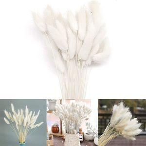 Sunshine smile 50 Stück Getrocknetes Pampasgras,Trockenblumen Blumenstrauß Deko,Pampasgras Natürlicher für Inneneinrichtungen Fotografie Hochzeit Weiß