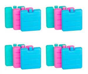 12er Set Kleine Kühlakkus - Mini Kühl-Elemente für die Kühltasche - Kühl-Akku für die Brotdose