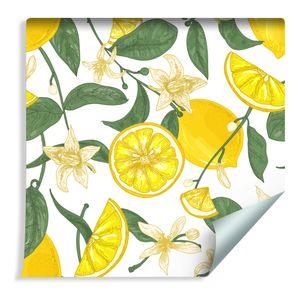 10m VLIES TAPETE Rolle Küche Obst Zitronen Pflanzen Blumen Blätter XXL