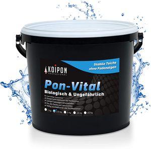 Koitec Pond-Vital - 2,5 kg keine Fadenalgen mehr