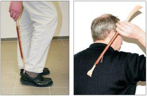 Rückenkratzer und Schuhanzieher Schuhlöffel Kratzhand