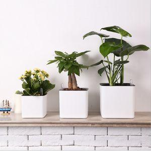 3er Pack Blumentopf Mit Selbstbewässerung Und Wasserstandsanzeige, S / M / L