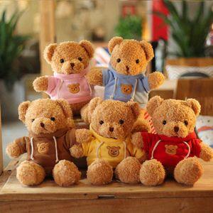 Farbpullover Plüschtier Teddy Bär Bär Plüschtier Umarme einen Bären Teddybär Kuscheltier 30cm Rosa