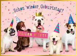 DeCoArt... 1 A5 Große Grüße Geburtstagskarte Schon wieder Geburtstag? Feiern hilft. Hunde mit Hüten ca 17x 23 cm mit Umschlag