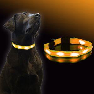 Hundehalsband Led Orange Leuchthalsband Hunde Sicherheitshalsband von UC-Express