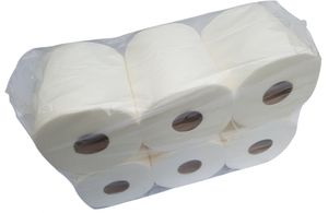 6 x Putztuch Papierhandtuchrolle Putzpapier Putztuchrollen Papierhandtücher 2-lagig Zellstoff