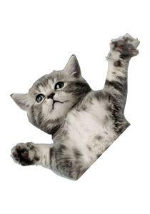 ONEBALLJAY Antirutschmatte Flying Cat