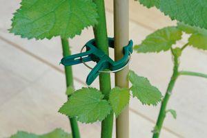 Garten Kunststoff Pflanzenclips Pflanzenklammern Pflanzenbinder Pflanzenhalter
