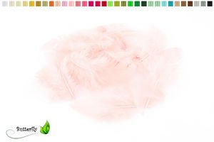 Bastelfedern 5-10cm, ca. 80-100 Stück, Farbauswahl:rose 123 / zartrosa / hellrosa