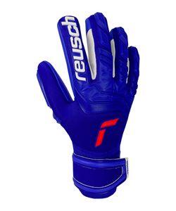 Reusch Attrakt Freegel Silver - deep blue / deep blue, Größe:10