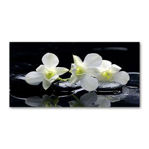 Tulup® Glas-Bild - 100x50 -Wandkunst - Wandbild hinter gehärtetem Sicherheitsglas  - Blumen & Pflanzen - Orchidee - Weiß