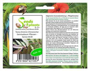 10x Toona Sinensis Chinesischer Gemüsebaum Pflanzen - Samen #138