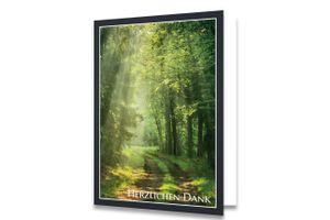 Friendly Fox Danksagungskarten Trauer mit Umschlag - 12 Trauerkarten mit Umschlag - Karten Set mit schönem Bild Waldweg - Danke Karte nach Beerdigung