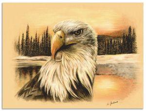 ARTland Alubilder Weißkopfseeadler handgemalt Alubild Größe: 40x30 cm