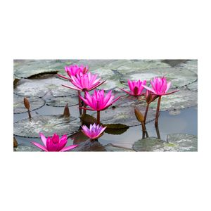 Tulup® Acrylglas - 140 x70 cm - Bild auf Plexiglas Acrylglas Bild - Dekorative Wand für Küche & Wohnzimmer  - Blumen & Pflanzen - Lotusblume - Rosa