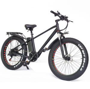26 Zoll Elektrofahrrad E-Bike E-Trekkingrad Mountainbike 750W 48V/24Ah Max 45km/h 55-80km, Bis 150kg