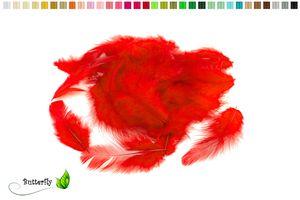 Bastelfedern 5-10cm, ca. 80-100 Stück, Farbauswahl:rot 250