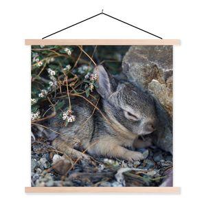 Textilposter - Baby-Kaninchen zwischen den Felsen - 60x60 cm - mit holzfarbenen Rahmen
