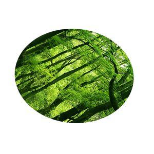 Digitaldruck-Tischdeckeabdeckung 140x140cm 3.green Dschungel 老旧 大树 140 x 140 cm 3. Grüner Dschungel