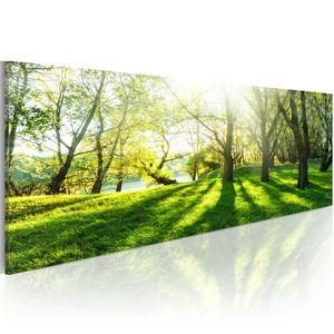 Modernes Wandbild c-B-0053-b-a (120x40)  1 Teilig Bilder Fotografie auf Vlies Leinwand Foto Bild Dekoration Wand Bilder Kunstdruck BÄUME NATUR LANDSCHAFT SONNENSCHEIN WALD
