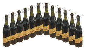 Fragolino Valmarone Rosso Kultgetränk aus Italien (12x0,75L)