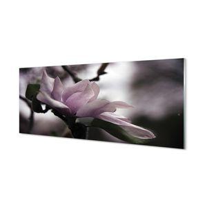 Glasbilder 125x50 Wandkunst Magnolie