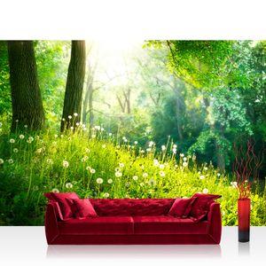 Fototapete Sunny Forest Wald Tapete Wald Bäume Natur Baum grün grün   no. 30, Größe:400x280 cm, Material:Fototapete Vlies - PREMIUM PLUS