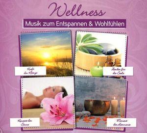- Wellness: Musik zum Entspannen & Wohlfühlen -   - (CD / Titel: Q-Z)