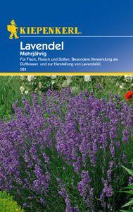 KIEPENKERL® Lavendel - Blumensamen