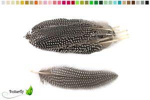 10 Perlhuhnflügelfeder Natur ca. 15-20cm