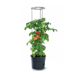 Topf für Tomatenpflanze 28L Pflanzkübel Tomate Grower aus Kunststoff anthrazit Tomatenzüchter